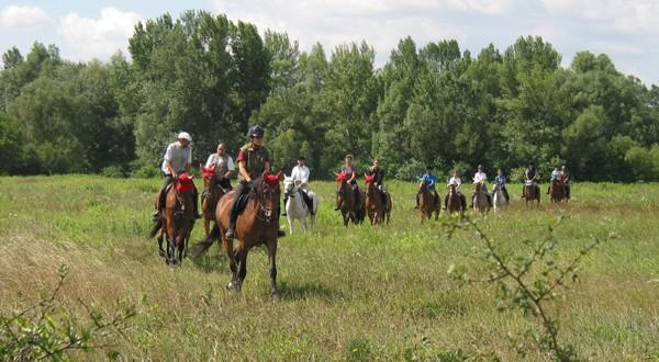 Lovaglás, lovaskocsikázás